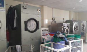 Thương hiệu máy sấy quần áo công nghiệp hàng đầu hiện nay